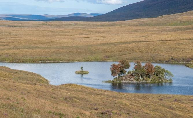 Loch na Glas-Choille