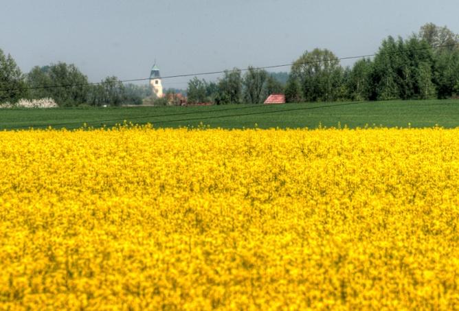 countryside-2