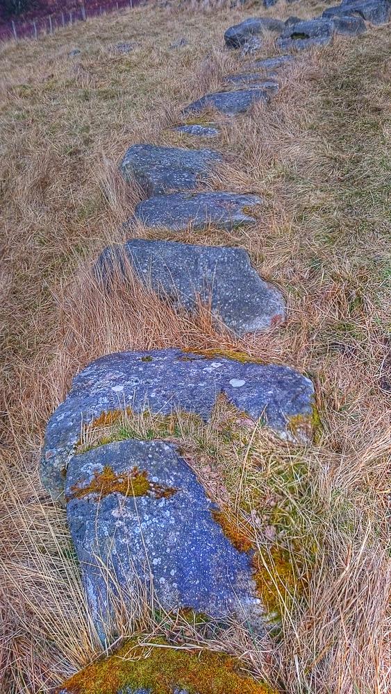 'Tiled' path